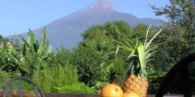 Arumeru River Lodge Mt Meru View
