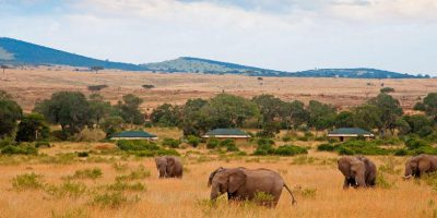 Crater Serengeti Mara