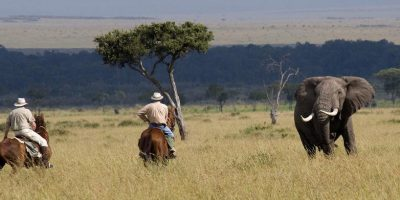 Masai Mara Horse Riding Safari 2