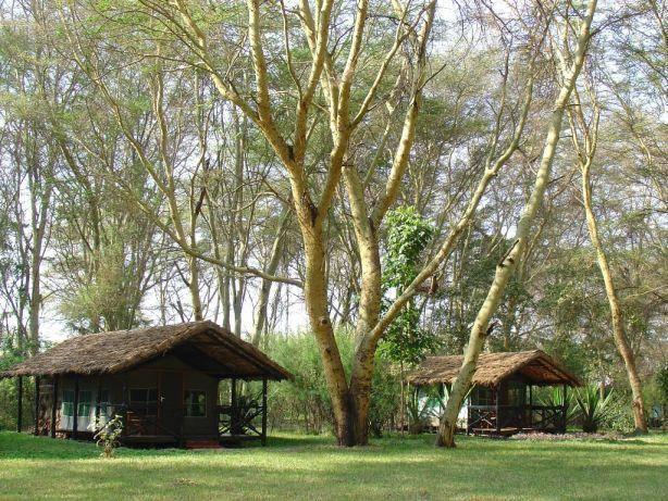 Migunga Tented Camp 2