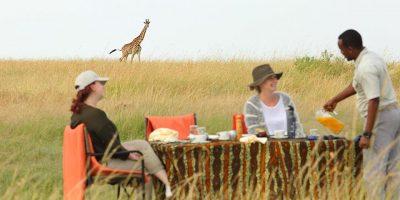 Olakira Bush Breakfast With Giraffe In The Background
