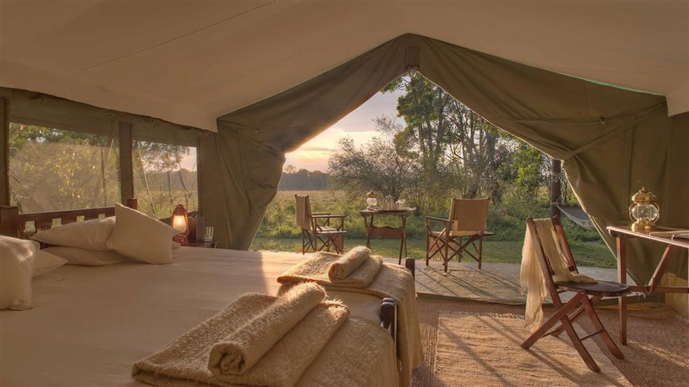 Elephant Pepper Camp Tents 2 1920x1080